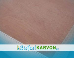 Beech Plywood